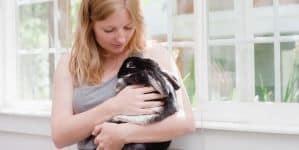 Vacinas para coelhos