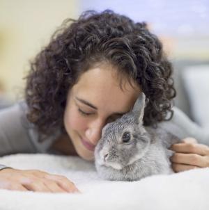 Como alimentar um coelho caseiro