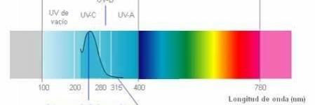 O que é a radiação UVB e qual é a melhor lâmpada para o teu terrário