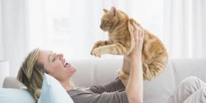 Benefícios de ter um gato em casa