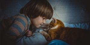 Os parasitas dos animais de estimação podem contagiar as crianças?