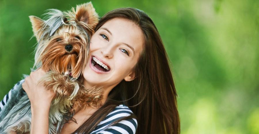 cuidados-com-o-yorkshire-terrier