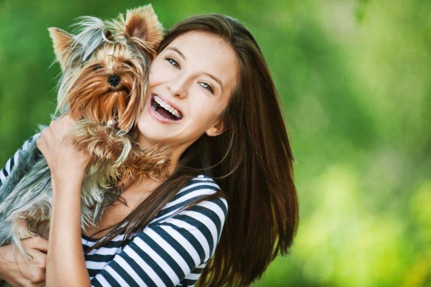 Os cães, melhores do que as pessoas Porquê