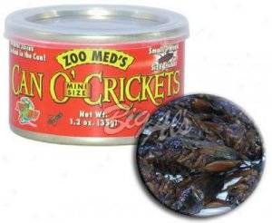 ZOOMED can o?crickets mini grilos