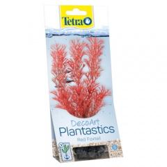 Plantas decorativas para aquários Foxtail