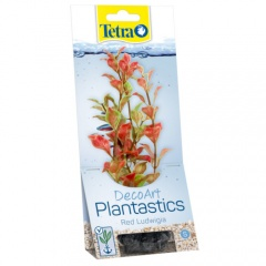 Plantas decorativas para aquários Ludwigia