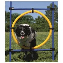 Argola de salto Agility para cães