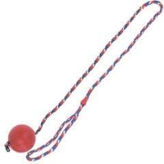 Bola com corda para cães