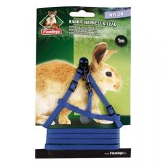 Peitoral e Trela para coelhos