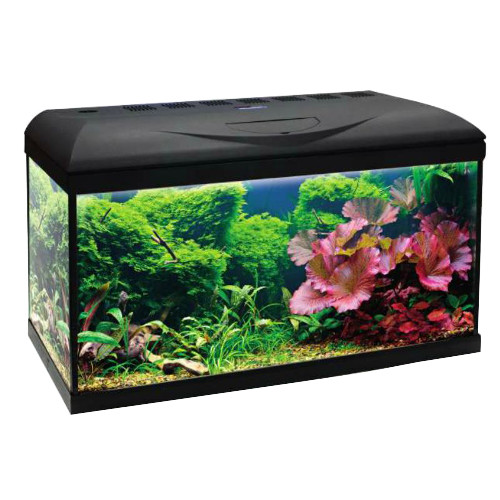 Aqu?rio Wave Riviera Basic 80 Led